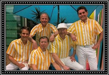 Surfin The Beach Boys Tribure